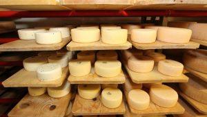 Produção de queijo no Vale do Emmen (Foto: Reprodução/Facebook)