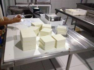 Produção de queijo coalho (Malta – Passira/PE)