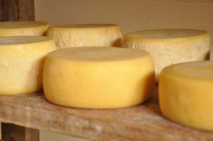 Resultado de imagem para queijo