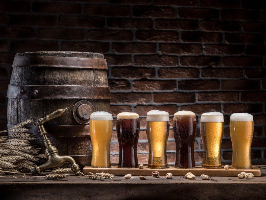 cerveja para iniciantes