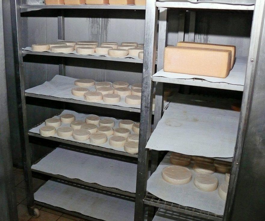 Queijo artesanal de leite cru